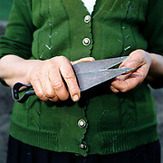 Ioana Trifoi, a Romanian peasant farmer holds a pair of clippers used for hand shearing sheep, Botiza, Maramures, Romania