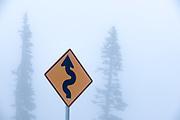 Road sign, fog, April, Hurricane Ridge, Olympic National Park, Washington, USA