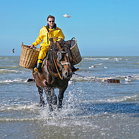 Shrimp Fishermen on Horseback, Oostduinkerk, Belgium
