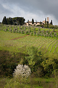 A hilltop chapel overlooking vineyards in Chianti, near Siena, Tuscany, Italy.