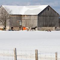 Paul Walker Farm