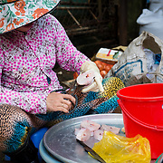 Woman preparing fish at street market in Saigon