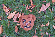Discarded Halloween debris lies in Ruskin Park, a south London green space in the borough of Southwark, after an ilegal gathering of young people during the second wave of the Coronavirus pandemic, on 1st November 2020, in London, England.