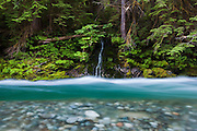 A small waterfall trickles into Bacon Creek, Mount Baker-Snoqualmie National Forest, Washington.