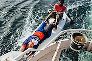 Kids on a board holding on to a boat cruising the Nile, this makes their transportation faster & easier