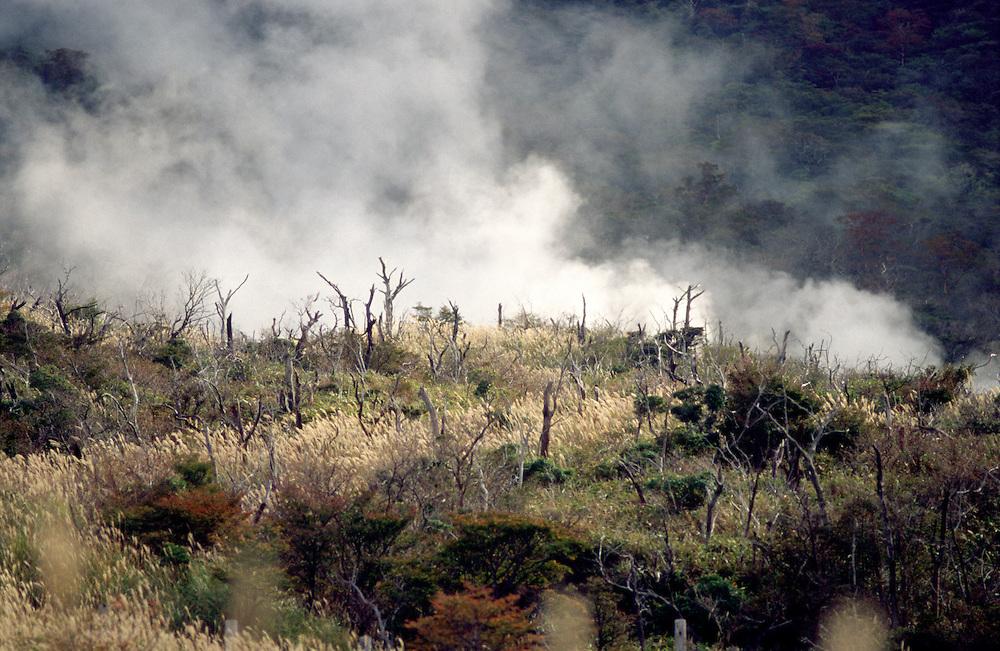 Sulphurous gas rises up from Owakudani, Hakone volcano, Kanagawa prefecture, Japan.