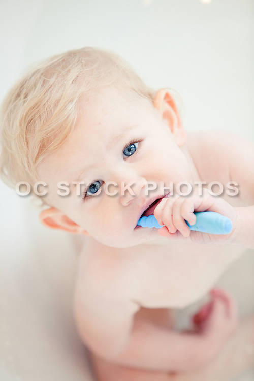 Blonde Toddler Brushing Teeth