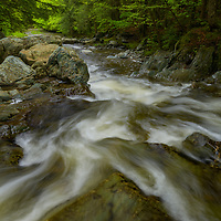 Forests, Streams & Lakes