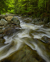Fresh spring greens and good flows on the North Branch of the Winooski in north central Vermont, USA