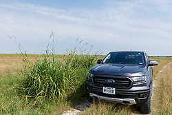 Truck and Eastern gamagrass on the Daphne Prairie, a remnant of the Blackland Prairie, Mount Vernon, Texas, USA.