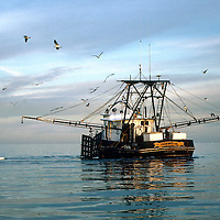 Texas Shrimping, Oystering and Fishing Boats