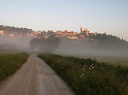 A country track on a misty morning, below the hilltop village of Solomeo in the evening, Umbria, Italy