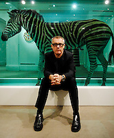 Damien Hurst With 'The Incredible Journey' (Zebra in formaldehyde)