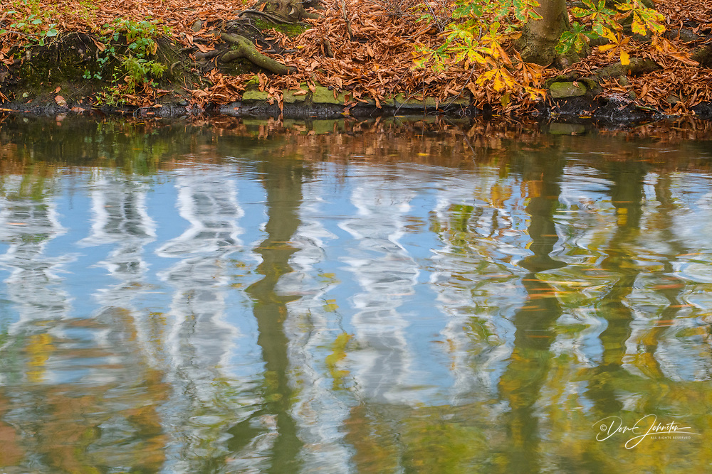 Reflections in the Regnitz River, Bamberg, Bavaria, Germany