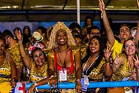 Spectators at the Carrnaval parades at the Sambadrome, Rio de Janeiro, Brazil.