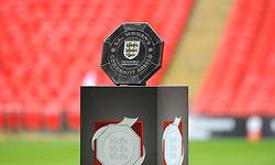 FA Women's Community Shield - Mandatory by-line: Nizaam Jones/JMP - 29/08/2020 - FOOTBALL - Wembley Stadium - London, England - Chelsea v Manchester City - FA Women's Community Shield
