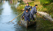Japanese workers in a small wooden boat clearing debris from Hisagoike Pond with nets in the Kenrokuen Garden, Kanazawa, Ishigawa, Japan