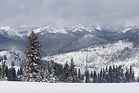 Alpine meadows of Manning Provincial Park British Columbia Canada in winter