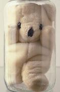 teddy bear stuffed in a jar