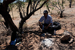 A migrant who got lost from his group and returned to Mexico takes shelter underneath a tree and waits for a car to pass that can take him to the nearest town.