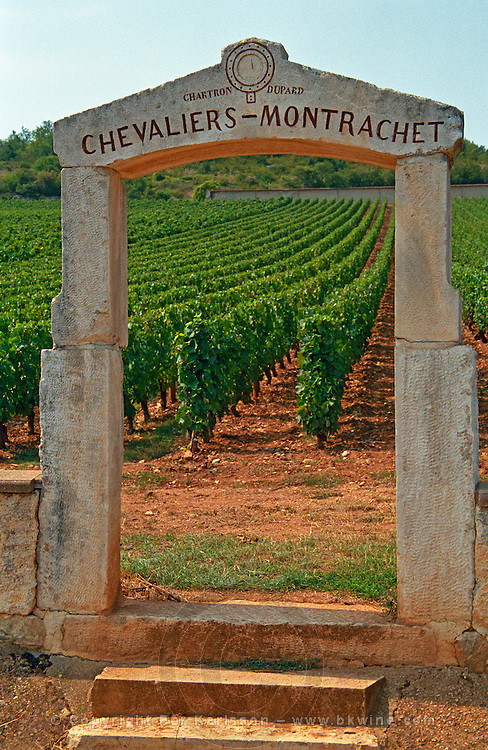 A stone portico to the vineyard Chevalier-Montrachet (Chartron Dupard), Burgundy, Bourgogne, France