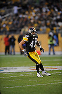 Troy Polamalu of the PIttsburgh Steelers during a 24-20 loss to Indianapolis on Sunday, Nov. 9, 2008 in Pittsburgh.