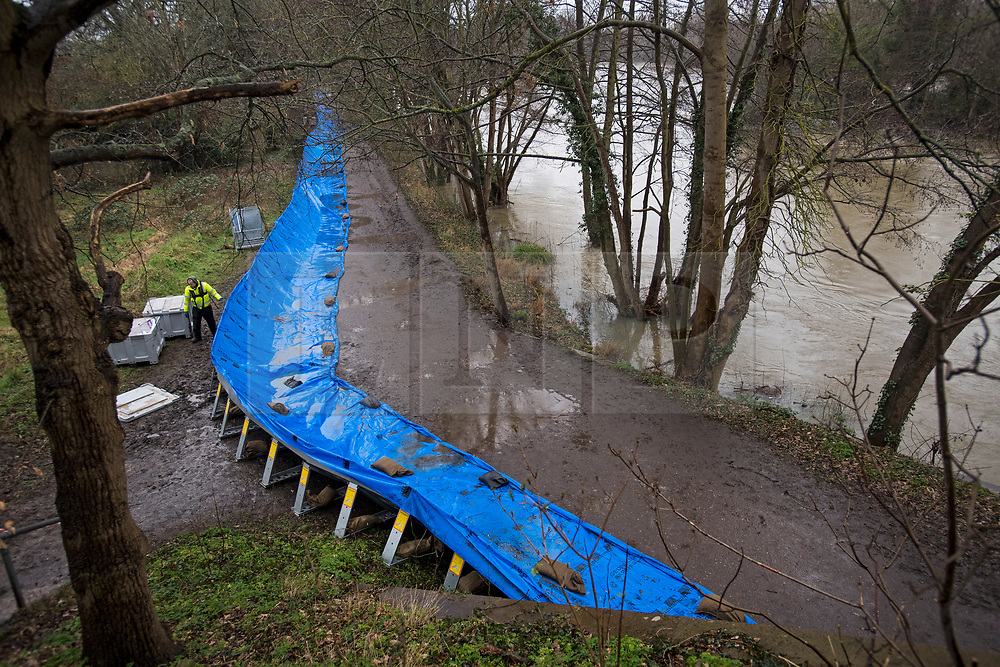 © Licensed to London News Pictures. 03/02/2021. Weybridge, UK. Flood defences along the banks of the River Thames at Weybridge in Surrey where water levels are rising. Large parts of the UK experience more wet conditions which is expected to bring further flooding. Photo credit: Ben Cawthra/LNP