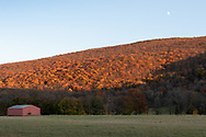 A view of Clove Brook Farm in Cornwall, N.Y., with Schunnemunk Mountain in the background on the afternoon of Nov. 6, 2019.