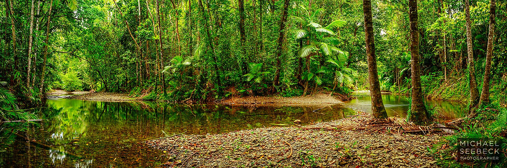 A panoramic photograph of a tranquil rainforest stream in the Daintree area of Far North Queensland.<br /> <br /> Limited Edition of 125