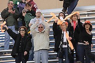 Middletown, New York  - Hicksville High School boys' soccer fans cheer after their team defeated Webster Schroeder in the New York State Class AA  boys' soccer championship game on Nov. 20, 2011.