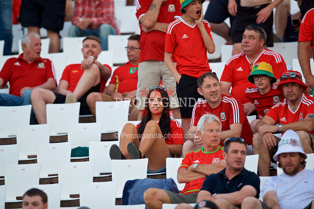 BELGRADE, SERBIA - Sunday, June 11, 2017: Wales supporters before the 2018 FIFA World Cup Qualifying Group D match between Wales and Serbia at the Red Star Stadium. (Pic by David Rawcliffe/Propaganda)