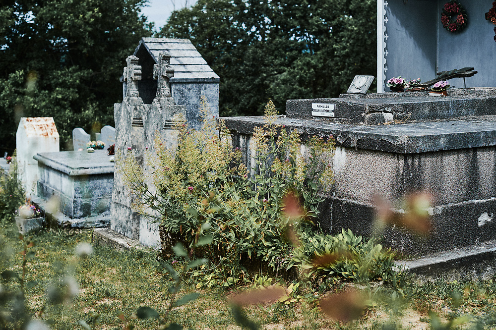 View of the outgrowing vegetation in the cemetary. Saint-Pierre-de-Frugie, France. July 12, 2019.
