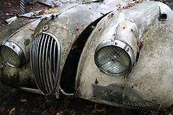 20.01.2016, Autofriedhof, Mettmann, GER, Mettmann Autofriedhof, im Bild Alter Jaguar verwittert auf einem Autofriedhof // cars on a weather on a car graveyard Autofriedhof in Mettmann, Germany on 2016/01/20. EXPA Pictures © 2016, PhotoCredit: EXPA/ Eibner-Pressefoto/ Deutzmann<br /> <br /> *****ATTENTION - OUT of GER*****