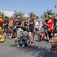 Cardiff by the Sea 100th Birthday Parade: Dirty Dogs
