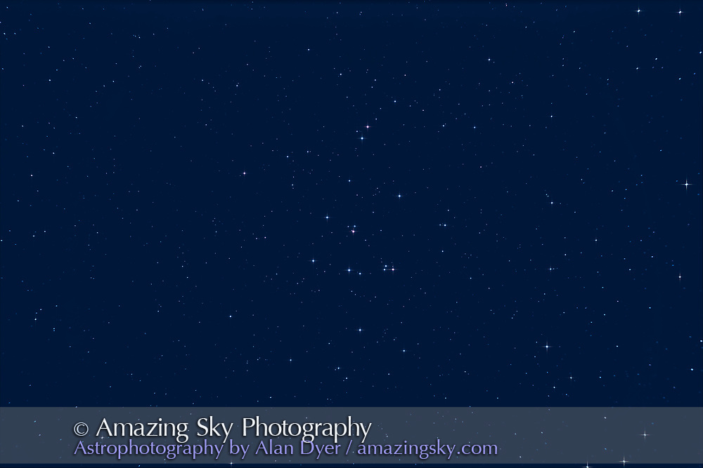 Messier 44, the Beehive star cluster in Cancer, in a moonlit sky. <br /><br />This is a stack of 8 x 4-minute exposures through the SharpStar 140PH apo refractor at f/6.5 with no field flattener or reducer, and using the Canon EOS Ra camera with an Astronomik CLS light pollution clip-in filter. Diffraction spikes added with Astronomy Tools actions. So, yes, this was taken with a refractor but the spikes are added for artistic effect. RC Astro Gradient Xterminator and StarShrink filters also applied.  While it would be possible to neutralize the sky colour I kept the blue moonlight, again for artistry.