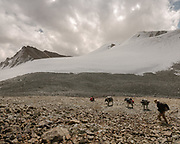 """Paul Salopek trekking with donkeys. Going over the Garumdee Pass (4895m). Guiding and photographing Paul Salopek while trekking with 2 donkeys across the """"Roof of the World"""", through the Afghan Pamir and Hindukush mountains, into Pakistan and the Karakoram mountains of the Greater Western Himalaya."""