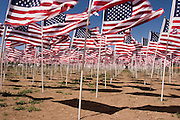 Hundreds of waving flags honor Memorial Day<br />