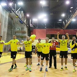 20141129: SLO, Handball - EHF Cup, RK Gorenje Velenje vs Permskie Medvedi