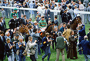 Press photographers and reporters surround the winning horse and jockey at Epsom Racecourse on Derby Day, UK