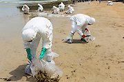 02 AUGUST 2013 - KOH SAMET, RAYONG, THAILAND: Workers clean up sands contaminated with oil on Ao Prao beach on Koh Samet island. About 50,000 liters of crude oil poured out of a pipeline in the Gulf of Thailand over the weekend authorities said. The oil made landfall on the white sand beaches of Ao Prao, on Koh Samet, a popular tourist destination in Rayong province about 2.5 hours southeast of Bangkok. Workers from PTT Global, owner of the pipeline, up to 500 Thai military personnel and volunteers are cleaning up the beaches. Tourists staying near the spill, which fouled Ao Prao beach, were evacuated to hotels on the east side of the island, which was not impacted by the spill. Officials have not said when Ao Prao beach would reopen. PTT Global Chemical Pcl is part of state-controlled PTT Pcl, Thailand's biggest energy firm.    PHOTO BY JACK KURTZ