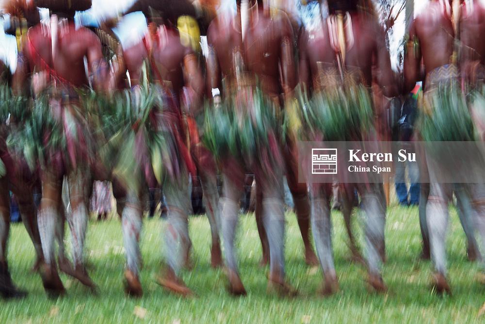 Huli wigmen dancing at Sing Sing Festival, Mt. Hagen, Papua New Guinea