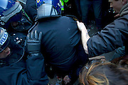 Mcc0027103 . Daily Telegraph...Students protesting in Westminster today against Tuition  Fee rises clash with Police at the Conservative Party headquarters...London 10 November 2010.....