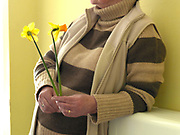 Daffodil grower and member of The Northern Group of the Daffodil Society with two daffodils ready for showing at Pilley Community Centre, South Yorkshire.