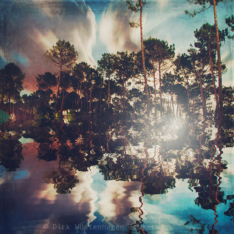 Digitally created reflection of pine trees. Long exposure<br /> Redbubble Prints & more --> http://bit.ly/Perfect_Symmetry_RB