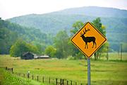 A sign warning of elk in Boxley Valley in Ponca, Arkansas near Jasper, Ar.