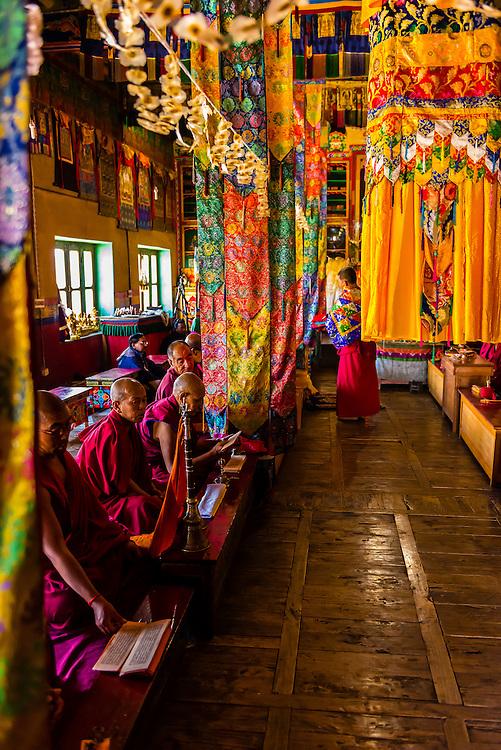 Buddhist monks of the Yellow Hat sect praying at the Diskit Monastery, Nubra Valley, Ladakh, Jammu and Kashmir State, India.