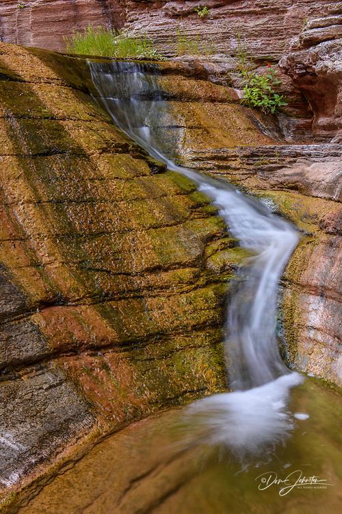 Stream-polished Cambrian Muav Limestone ledges in Matkatamiba Canyon, Grand Canyon National Park, Arizona, USA