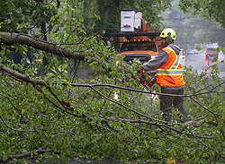 A worker removes a fallen tree blocking a road in Dartmouth, N.S. as hurricane Dorian approaches on Saturday, September 7, 2019, Canada. Photo by Andrew Vaughan/CP/ABACAPRESS.COM