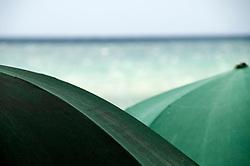 Salento - Puglia - Marina di Pescoluse - Ombrelloni verdi richiamano il verde del mare.