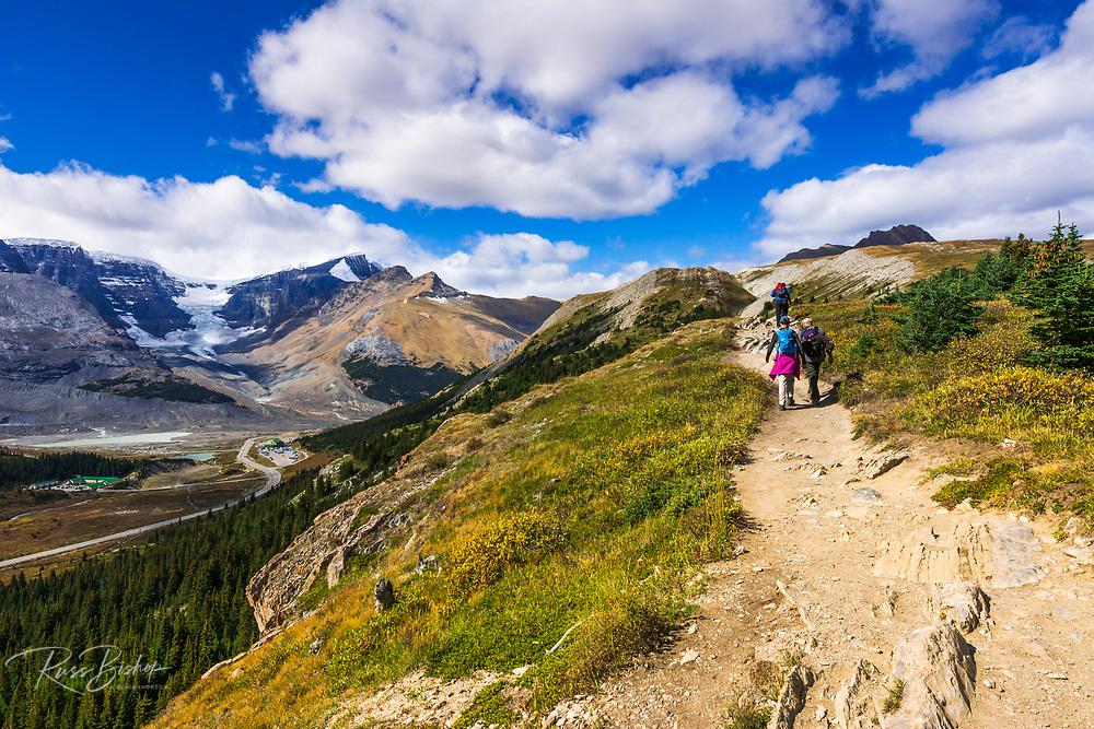 Hikers on Wilcox Ridge above the Columbia Icefields, Jasper National Park, Alberta, Canada